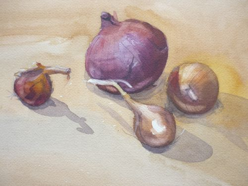 Onions (watercolour) SOLD