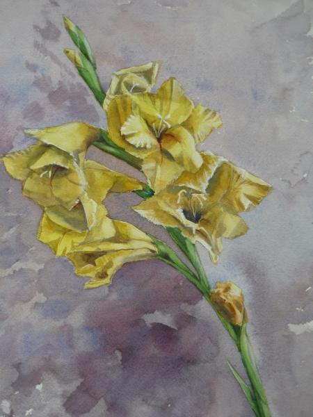 Yellow Gladioli2