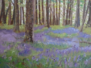 Bluebell Wood I (oil on board)