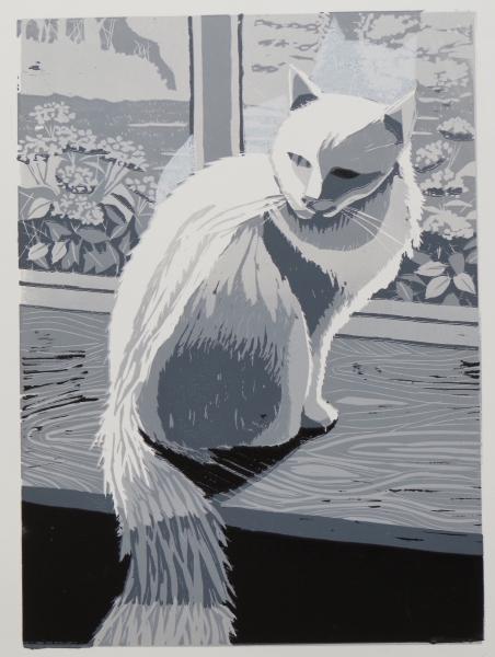 Contre-jour Cat