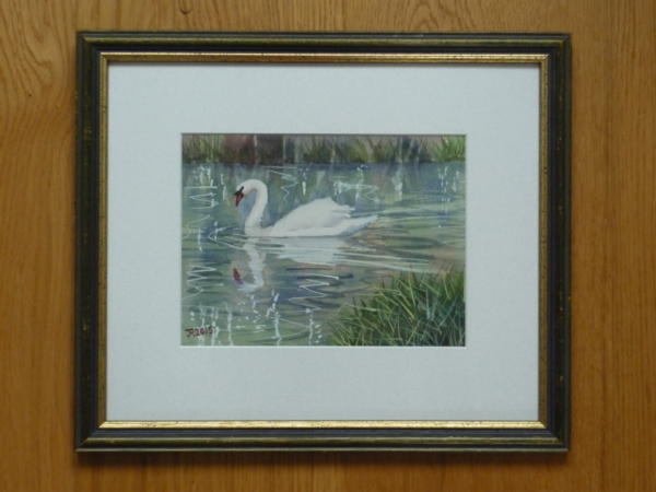 syon-swan-framed-lower-res