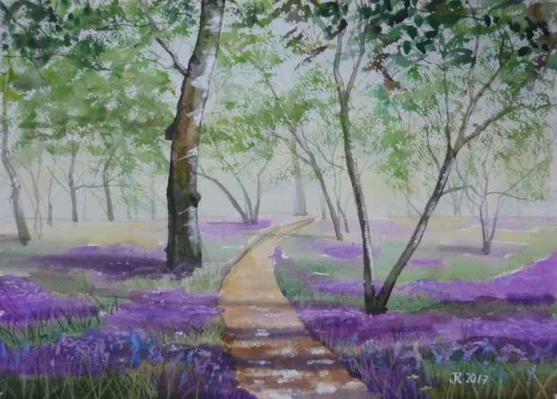 Bluebells in Perivale Wood II